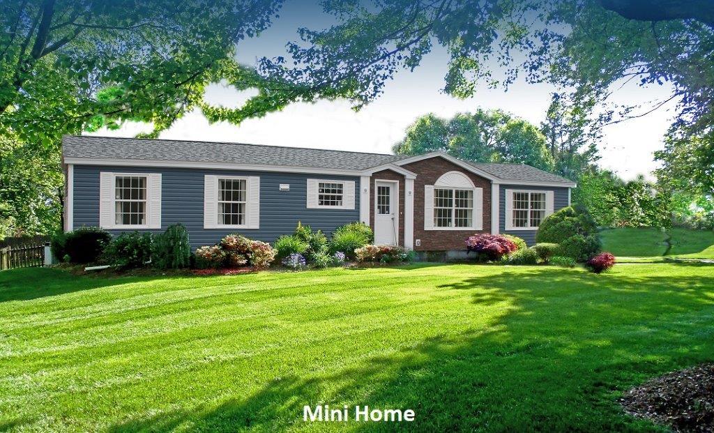 2 Mini Home